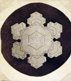 "Wilson ""Snowflake"" Bentley (1866 – 1931) - Popular Mechanic, Photomicrographs c 1922"