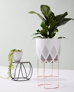 Indoor plants have always been in style - we show you the best way to style and maintain your greenery with some gorgeous planters.