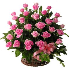 Pink roses symbolize grace and elegance and stands for the expression admiration. Give this 30 beautiful long stem bud to really someone special whom you adore. Convey your adore feeling by this bouquet Best Online Flowers, Order Flowers Online, Send Roses, Buy Roses, Send Flowers, Tulip Bouquet, Rose Bouquet, Basket Flower Arrangements, Floral Arrangements