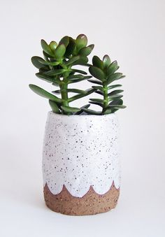 Made to Order Scalloped Pottery Planter by susansimonini on Etsy