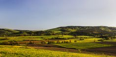 Springtime | zoom | digart.pl Spring Time, Vineyard, Golf Courses, Mountains, Sport, Landscape, Photography, Outdoor, Outdoors