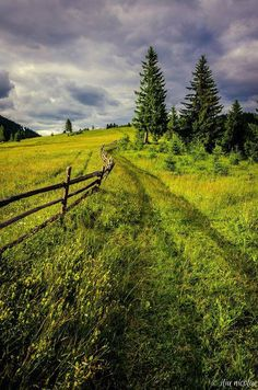 Summer in Bucovina county, Romania Transylvania Romania, Visit Romania, East Of Eden, Bucharest, Eastern Europe, Landscape Photos, Amazing Nature, Cool Places To Visit, Beautiful Landscapes