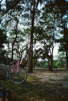จักรยานคันเก่า.