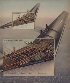 Cutaway drawing of the Northrop Flying Wing. Flying Wing, Flying Ace, Affiche Star Trek, Yb 49, Delta Wing, Vintage Airplanes, Vintage Cars, Flying Vehicles, Luftwaffe