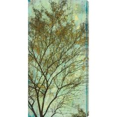 Gallery Direct Abstracted Trees IV by Sara Abbott Painting Print on Canvas Size: