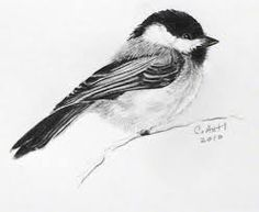 clip art bird flying chickadee - Google Search