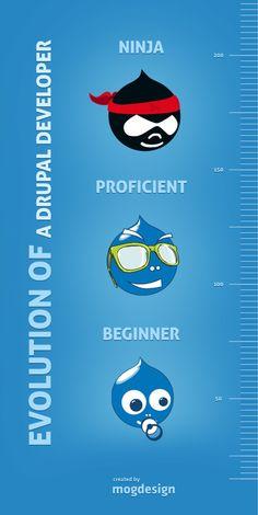 Evolution of a Drupal Developer #drupal