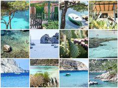 """life in """"calanque de Sormiou"""", Marseille,"""
