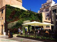 Este jardín vertical se encuentra ubicado en la pared medianera de la casa colindante a la Calahorra. Tiene una superficie de 100 metros cuadrados y cuenta con más de 3000 plantas.