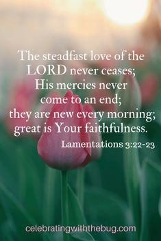 How You Can Start Your Day Over! Encouragement for the weary and inspiration from the Bible through Lamentations 3:22-23 find out more in this post!