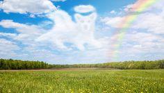 Dog going to heaven rainbow