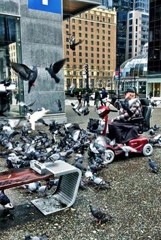 Old Dude Feeds And Runs Down Pigeons On Granville Street #SeenInVancouver #Vancouver