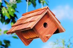 53 Free DIY Bird House & Bird Feeder Plans that Will Attract Them to Your Garden Bird Feeder Plans, Bird House Feeder, Bird Feeders, Bird House Plans Free, Bird House Kits, Backyard Projects, Wood Projects, Woodworking Projects, Woodworking Books