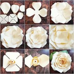 DIY Giant Rose Templates, Paper Rose Patterns & Tutorials, Paper Rose Flower Wall, SVG Cut files for Paper Flowers Discover thousands of images about Full rose paper flower template sets. Fun and easy to make! Step by step Regina rose tutorial. Giant Paper Flowers, Diy Flowers, Fabric Flowers, Diy Paper Roses, Paper Flowers How To Make, Paper Flower Wall, Paper Flowers Wall Decor, Hanging Paper Flowers, Paper Flower Backdrop Wedding