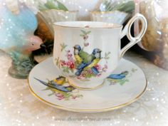 Beautiful Royal Dover bird pattern on this fine china cup and saucer - with the most delectable of handles at http://www.thewritersreverie.com/2014/03/birds-in-the-tea.html