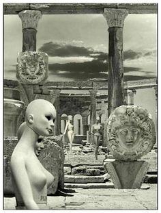 Zofia Rydet, 1979