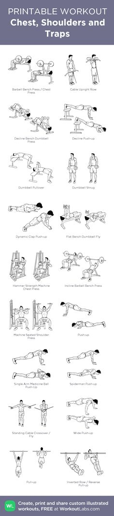 Chest, Shoulders and Traps: my visual workout created at WorkoutLabs.com • Click through to customize and download as a FREE PDF! #customworkout