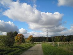 Landscape near Hersted heights