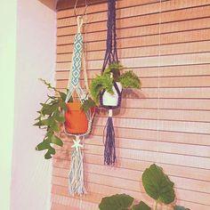 【irie_beach】さんのInstagramをピンしています。 《西海岸スタイルによく合うプラントハンガー入荷しています🌵🌵 プラントハンガーとは、麻ひも・毛糸・ロープなど、ひも状のものを編んで、そこに植物入れて吊るしたものです🇺🇸 植物だけでなく、綺麗なガラスの入れ物や海外の瓶などを入れてもステキ。 それを天井や窓辺に吊るすと一気にオシャレに。狭い空間でも上から吊るすことで、グリーンをうまく引き立てることができます🏄 #IrieBeach #ハンドメイド#シェル#ヒトデ#スターフィッシュ#海#ビーチ#プチプラ #ビーチアクセサリー#デニム#プレゼント#西海岸#カリフォルニア #ハワイ#handmade #beach#sea#surf #HAWAI#ロンハーマン#wtw#ベイフロー#ゴープロのある生活 #Supreme#シュプリーム#beachhouse#ビーチハウス #wtwstyle#西海岸インテリア #キータグ》