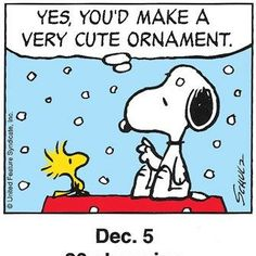 Yes, you'd make a very cute ornament.~I love anything with Woodstock, he's so adorable! :)