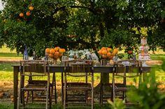 orange grove table | Sarah Becker #wedding