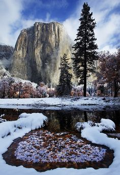 Winter in Yosemite National Park, California, USA