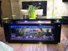 glass coffee table fish tank for sale bsd-354071 - buy coffee