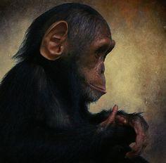 Baby monkey     http://timemart.com.vn/  http://timemart.com.vn/may-tap-co-bung/  http://timemart.com.vn/bep-hong-ngoai-bep-tu/  http://timemart.com.vn/tranh-theu-chu-thap/