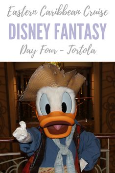 Disney Fantasy Eastern Caribbean Cruise: Day Four – Tortola, British Virgin Islands Disney Halloween Cruise, Disney Fantasy Cruise, Disney Dream Cruise, Disney Cruise Excursions, Disney Vacations, Disney Trips, Cruise Florida, Florida Keys, Eastern Caribbean Cruises