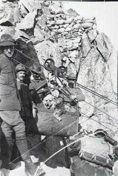 Italian Alpini