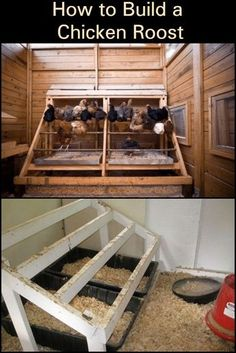Chicken Coop Ideas 595952963178704108 - Learn How to Build a Good Chicken Roost Source by natcrioult Backyard Chicken Coop Plans, Chicken Coop Run, Chicken Coup, Raising Backyard Chickens, Building A Chicken Coop, Inside Chicken Coop, Chicken Coop Pallets, Small Chicken Coops, Chicken Roost