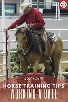 AQHA: Horse Training for Working a Gate