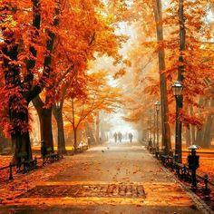 Cracovia in autunno