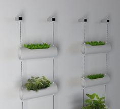 Matic Indoor Farm by Joana Amaral