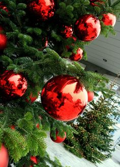 amazing how pretty simple red ball ornaments can be..