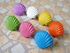 Shell Cabinet Knobs / Kids Dresser Knobs / by ARoseRambling