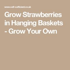 Grow Strawberries in Hanging Baskets - Grow Your Own