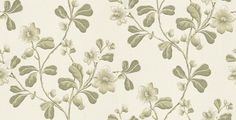 An early C design based on a botanically accurate reproduction of an American native plant. Available in 7 colourways – shown in rose pinks on a neutral base. Please ask for sample for true colour match. Complimentary paints also available. Green Wallpaper, More Wallpaper, Pattern Wallpaper, Little Greene, Colour Match, Native Plants, True Colors, Pink Roses, Nativity