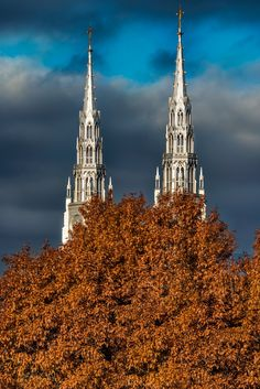 Spires through the Tree - Looking at Notre-Dame Cathedral Basilica spires from Major's Hill Park beyond a tree