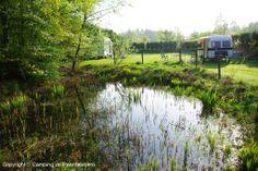 Mini camping de Paardebloem - Foto's / Media