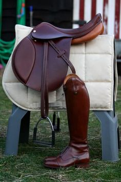 Something to save for. The rich leather on this tack with the white quilted pad. A must in my wish list