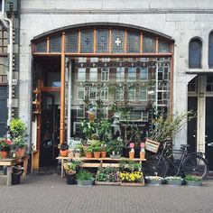 Nice plant shop, and they have a cute bird inside - mooi anders vaas-bloem Design Exterior, Shop Interior Design, Shop House Plans, Shop Plans, Shop Front Design, Shop Window Displays, Cute Birds, Architecture, Coffee Shop