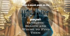 Take a sneak peek on the Harry Potter prequel, Fantastic Beasts and Where to Find Them - Fun Fact LOL Harry Potter Prequel, Fantastic Beasts And Where, Fun Facts, Take That, Lol, Movies, Films, Cinema, Movie