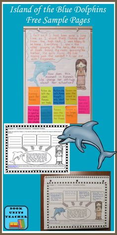 Island of the Blue Dolphins Book Unit Free Samples