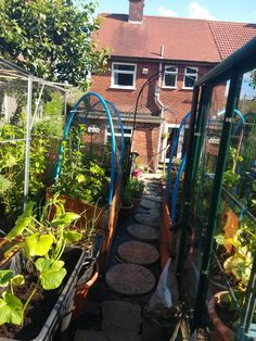 Allotment, Back Gardens, Life Is Good, Outdoor Structures, Life Is Beautiful