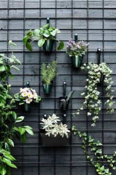 34 Nice Outdoor Hanging Plants Design Ideas - Every home becomes cozier with some hanging or potted indoor plants. For the garden or along the front walkway, outdoor artificial plants will do. Hanging Plants Outdoor, Indoor Plants, Indoor Outdoor, Outdoor Wall Planters, Concrete Planters, Hanging Planters, Hanging Plant Wall, Outdoor Balcony, Buy Plants