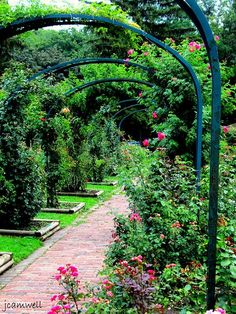 Thornden Park, Syracuse