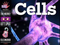 Learn all about how cells gather fuel, create energy, grow, and reproduce, with… Science Lessons, Science Activities, Life Science, Science Ideas, Science Education, Visual Learning, Stem Learning, Learning Resources, Teaching Ideas