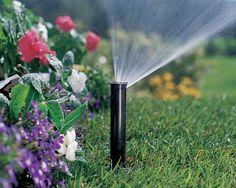 Irrigation - Winterberry Garden.www.BlueSkyRain.com #irrigation #lighting #landscaping #gardening #flowers Lawn Sprinkler System, Lawn Sprinklers, Irrigation, Garden Tools, Graphic Design, Landscape, Flowers, Partner, Experiment
