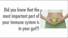 Did you know?  Visit goprobioticbenefits.com  #probiotics #probioticskincare #probioticsupport #probioticsforlife #probioticsupplement #probioticsforthewin #probioticsoda #guthelath #probiotics101 #guthealthmatters #guthealthy #guthealthiskey #guthealthiseverything